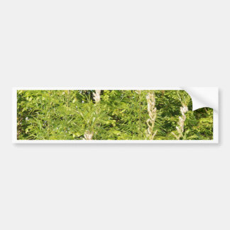 Trees And Grasses Bumper Sticker