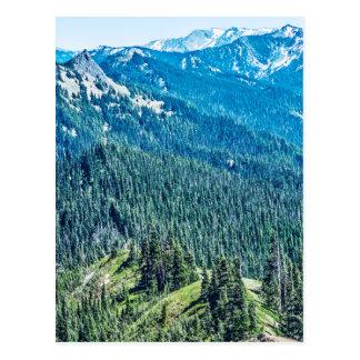 Trees and  Ridges Postcard