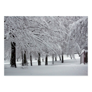 trees and snow pack of chubby business cards