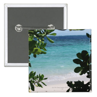 Trees and the sea pinback button