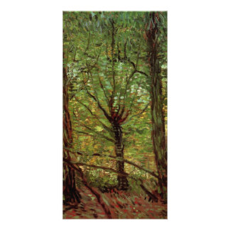 Trees and Undergrowth by Vincent van Gogh Photo Card Template