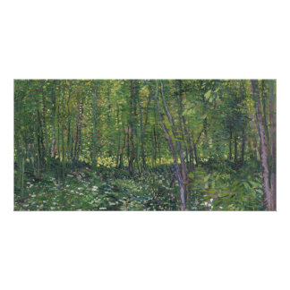 Trees and Undergrowth by Vincent Van Gogh Photo Cards