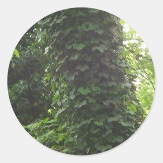 Trees and vines round sticker