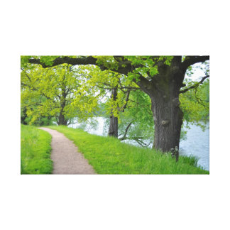 Trees at the lake with footpath, spring, canvas prints