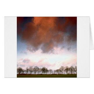 Trees Auburn Sky Card