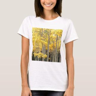 Trees Autumn Aspens Kenosha Pass Colorado T-Shirt