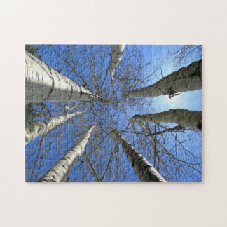 Trees Birch Nature Forest. Jigsaw Puzzle
