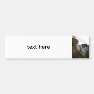 Trees Bumper Stickers