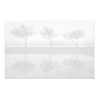 Trees by the lake customized stationery