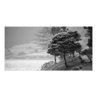Trees by the lake photo card template