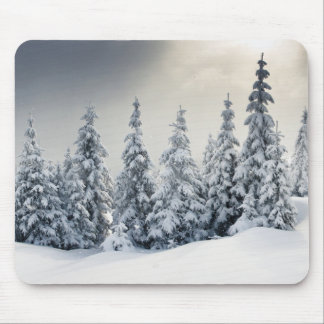 Trees Covered With Hoarfrost And Snow Mouse Pad