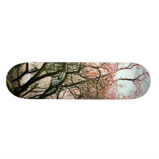 TREES CUSTOM SKATE BOARD