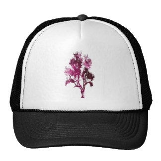 TREES Fall Color Graphics TEMPLATE Resellers Gifts Cap