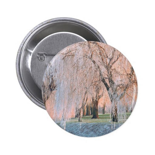 Trees Ice Covered Willow Button