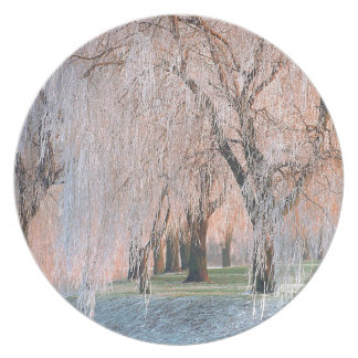 Trees Ice Covered Willow Party Plates