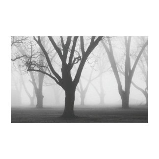 Trees In A Fog II Landscape Canvas Print