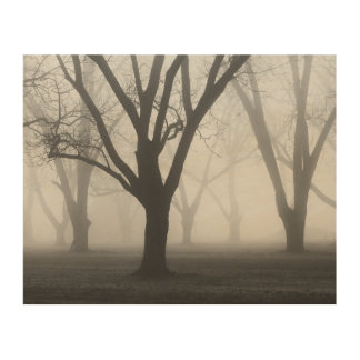 Trees In A Fog II Landscape Wood Wall Art