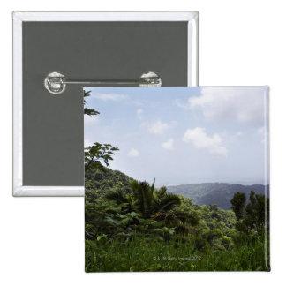 Trees in a rainforest, El Yunque Rainforest, 15 Cm Square Badge