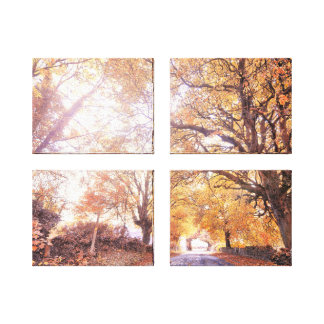 Trees In Autumn Canvas Prints