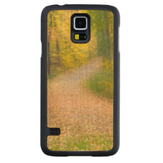 Trees in Autumn Colors and Leaf-Covered Pathway Carved Maple Galaxy S5 Case