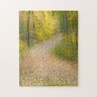 Trees in Autumn Colors and Leaf-Covered Pathway Jigsaw Puzzle