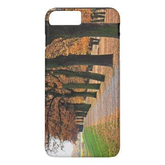 Trees In Fall Season iPhone 7 Plus Case