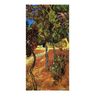 Trees in Garden of Saint-Paul Hospital by van Gogh Photo Card