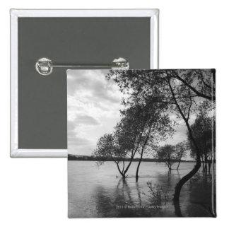 Trees in lake 15 cm square badge