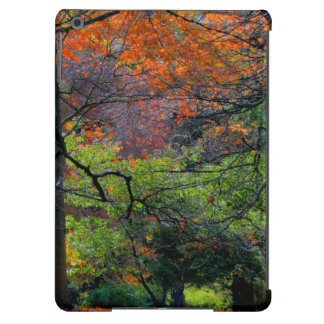 Trees in the Fall Case For iPad Air