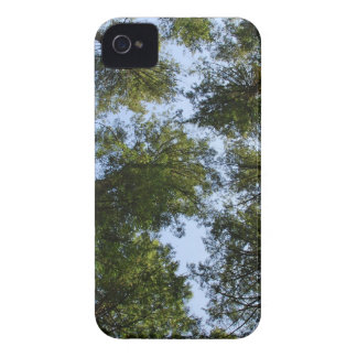 Trees in the Sky iPhone 4 Case