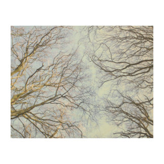 Trees in the Wind Wood Canvas