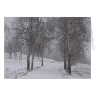 Trees in Winter Card