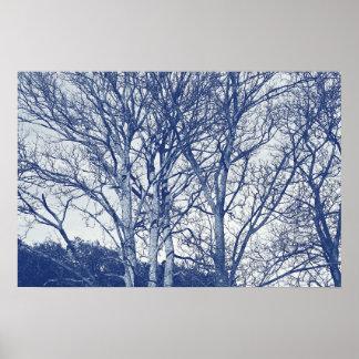 Trees in Winter - Cyanotype Effect Poster