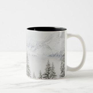 Trees in winter Two-Tone coffee mug