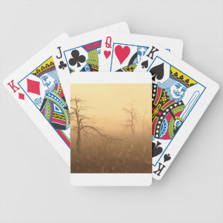 Trees Morning Dew Everglades Florida Bicycle Poker Cards