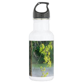 Trees Morning Fog Percy Warner Tennessee 532 Ml Water Bottle