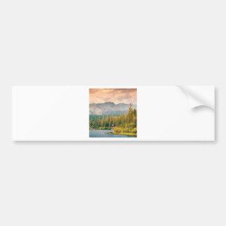 trees mountain and stream bumper sticker