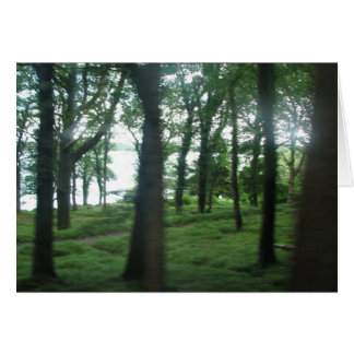 Trees of County Kerry Card