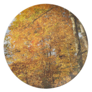 Trees of Fall Plate