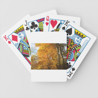 Trees of Fall Poker Deck