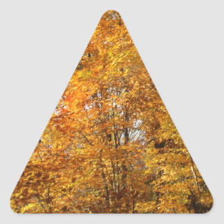 Trees of Fall Triangle Sticker