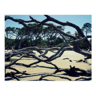 Trees on Jekyll Postcard