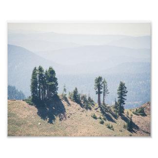 Trees Overlooking Lassen | Photo Print