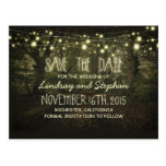 trees path romantic string lights save the date