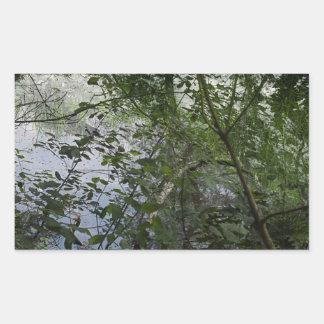 Trees Rectangular Sticker