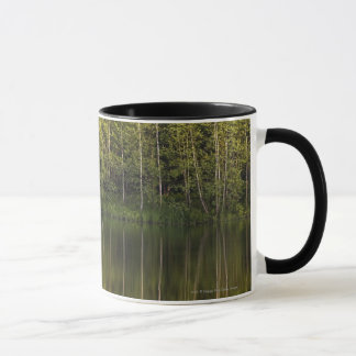 Trees Reflected In The Water Mug