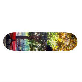 trees skate boards