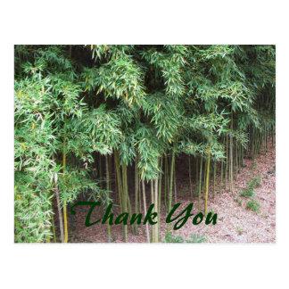 Trees Thank You Postcard