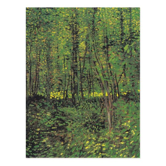 Trees & Undergrowth by Van Gogh Postcard