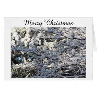 trees with snow card